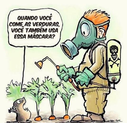 agrotoxico-veneno-1273