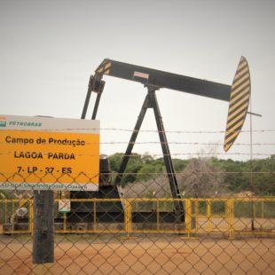 Cavalinho de petróleo.